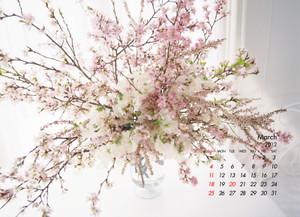 Flower1203_2